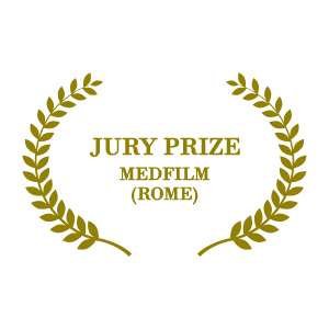 Jury Prize - MedFilm (Rome)
