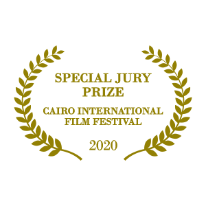 Cairo International Film Festival Special Jury Prize